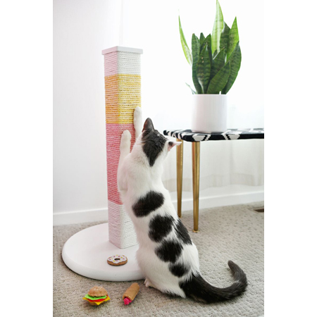7 purrfect home decor cat diy projects the cottage market