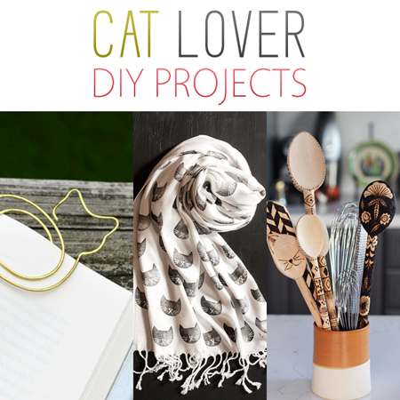 Cat Lover DIY Projects