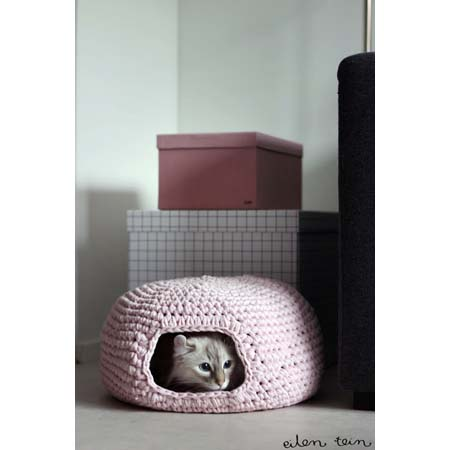DIY Cat Project 1