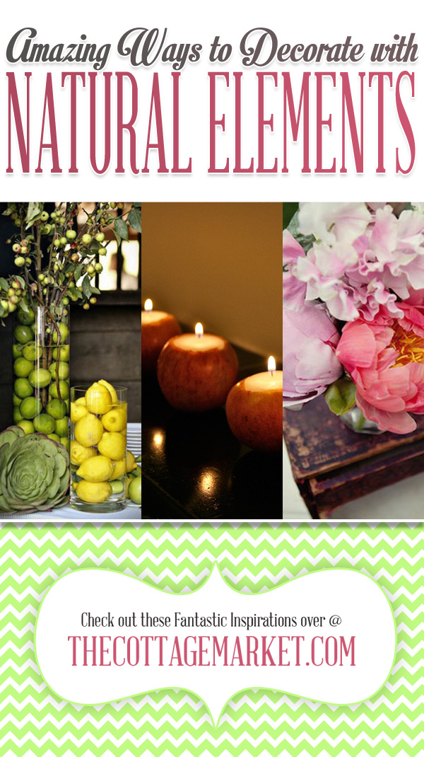 Amazing Ways to Decorate with Natural Decor