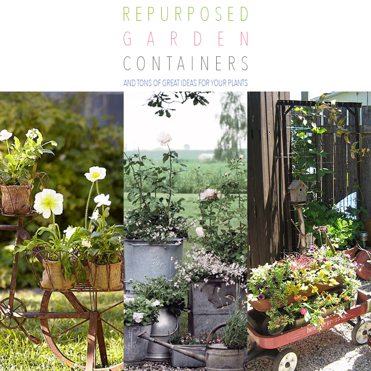 Repurposed Garden Containers and Tons of Great ideas for your plants on tuscan garden design, italian garden design, french garden furniture, french style gardens, french small garden design, french garden sheds, mid-century modern garden design, primitive garden design, prairie garden design, french garden drawing designs, french cottage gardens, autumn garden design, floral garden design, small cottage garden design, english garden design, french garden house design, dragonfly garden design, vintage garden design, victorian garden design, greek revival garden design,