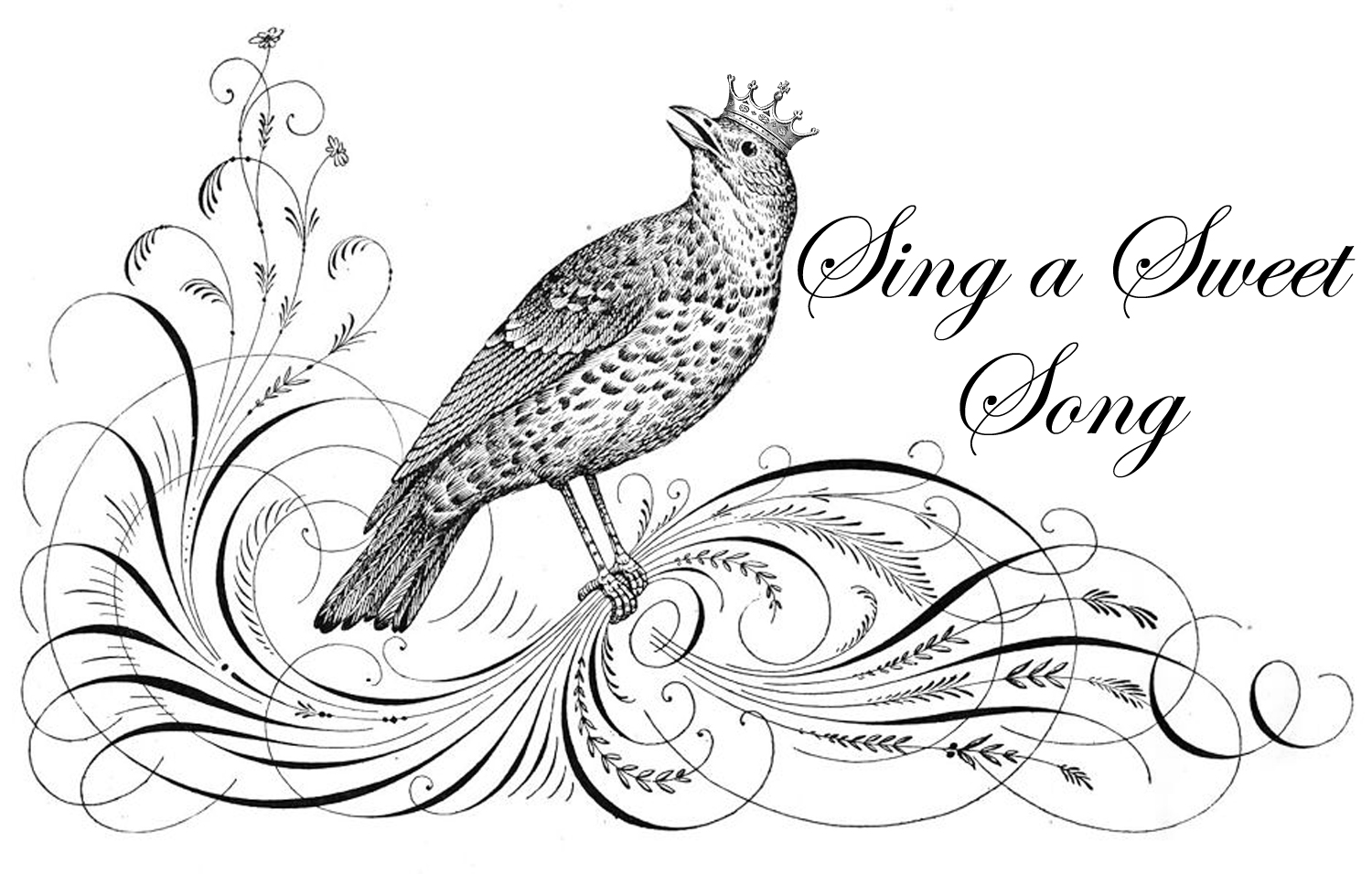 Free Graphic Of The Evening Crowned Song Bird The