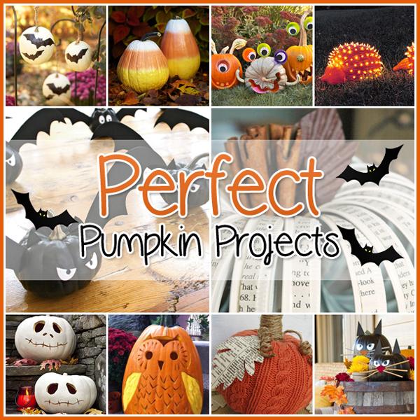 35 Perfect Pumpkin Projects