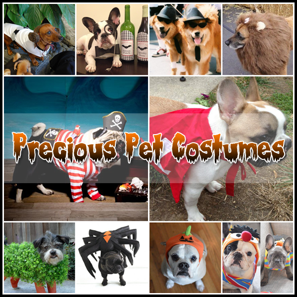 Pet Halloween Costumes Handmade DIY's and More