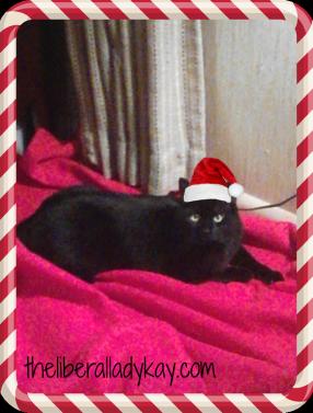 2013.12.16-my-christmas-helper