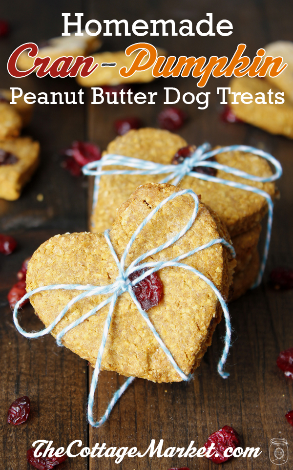 HomemadCran-PumpkinPeanutButterDogTreats-Tower-1