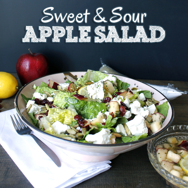 Sweet and Sour Apple and Cranberry Salad