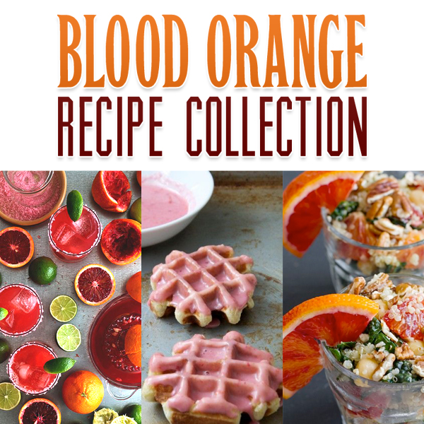 Blood Orange Recipe Collection