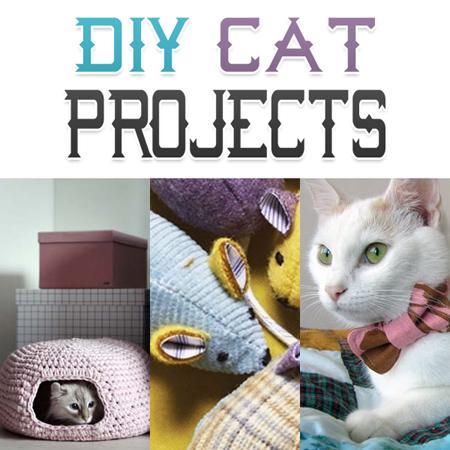DIY Cat Projects