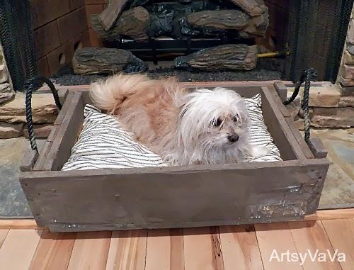 dog bed1H