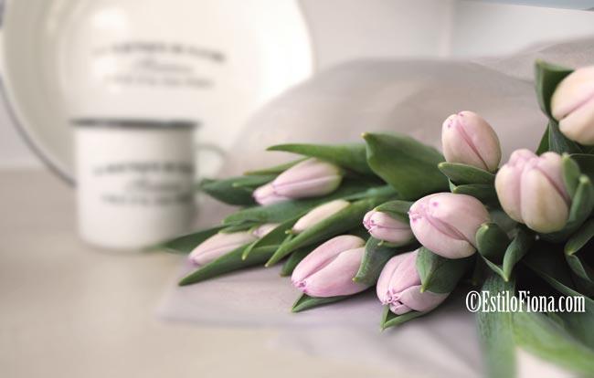 tulipanes-v1