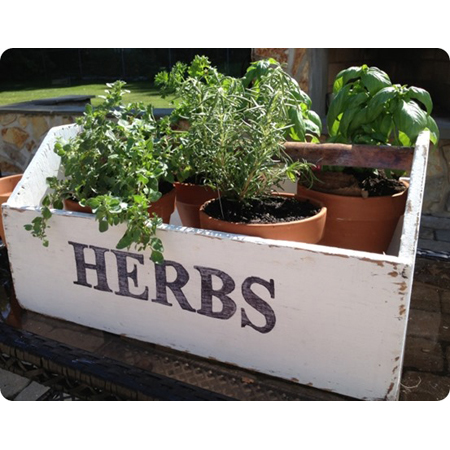 Two It Yourself...DIY Herb Garden Box from and Old Toolbox