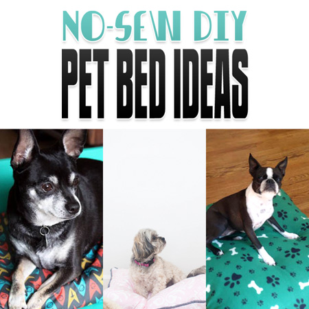 No Sew DIY Pet Beds