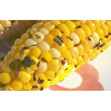 Food.com … Herbed Corn on the Cob Grilled in Foil