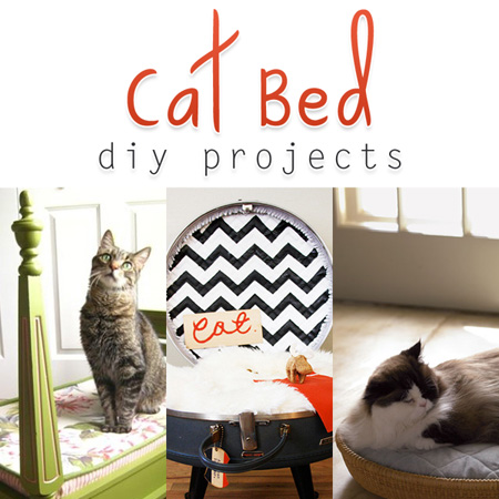 Cat Bed DIY Projects