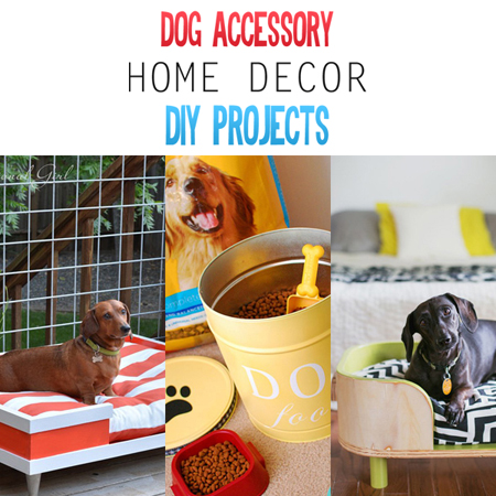 Dog Accessory Home Decor DIY Projects