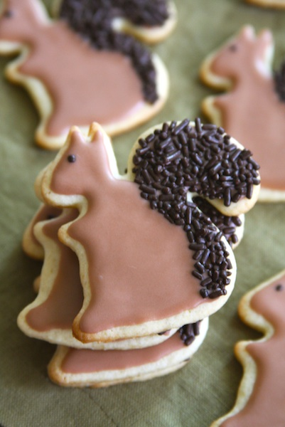 Squirrel Cookies 5