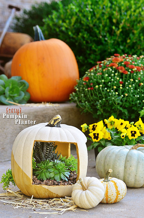 Easy Gold Faux Pumpkin planter tutorial at TidyMom.net