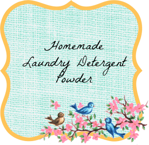 Homemade Laundry Detergent Powder Label