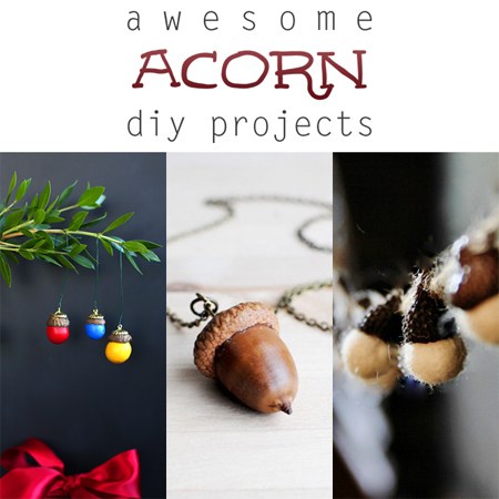 Awesome acorn diy projects the cottage market for Epic diy projects