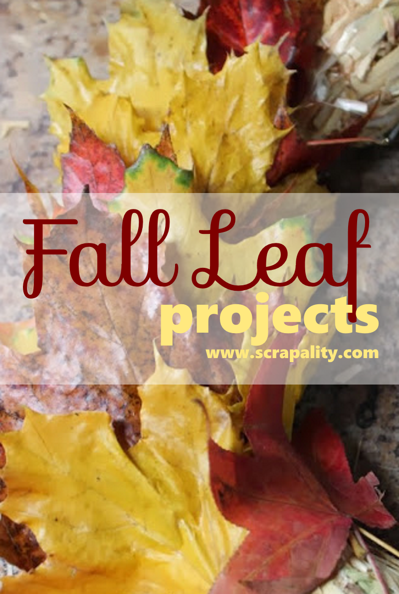 fall-leaf-projects