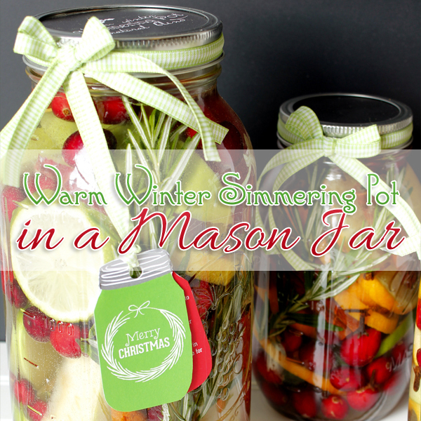 Mason jar gift diy simmering pot diy candle diy with for Christmas candle gift ideas