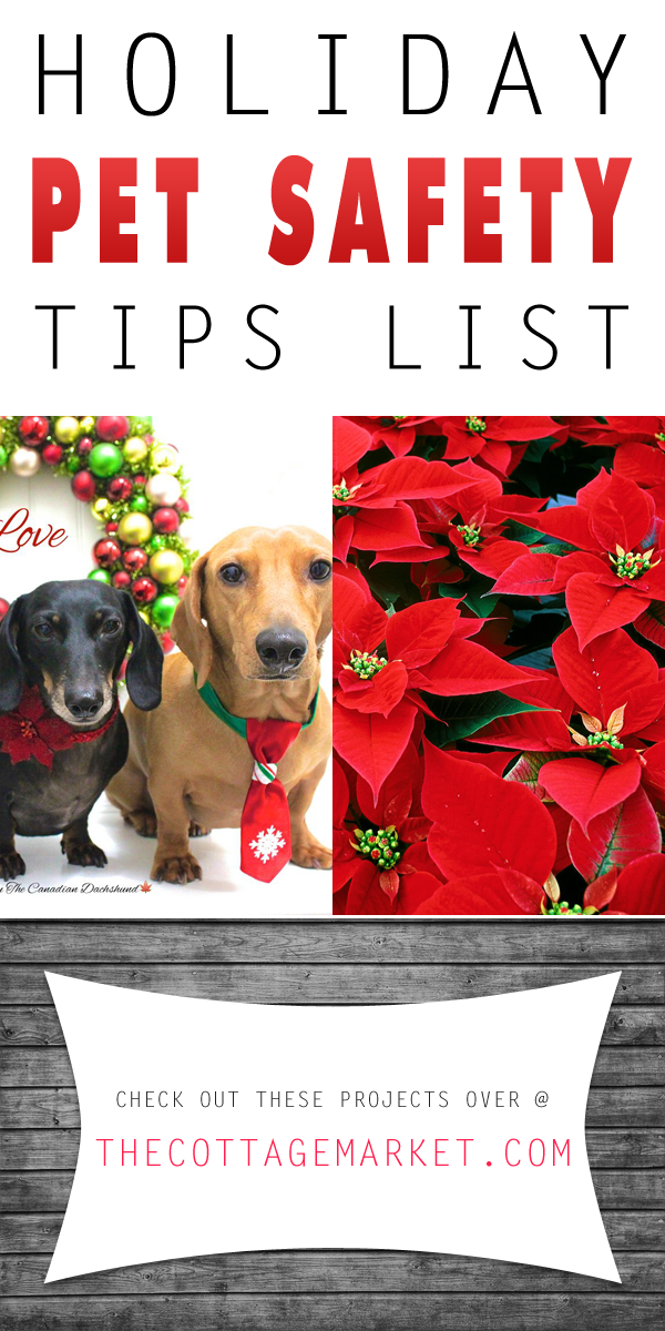 Holiday pet safety tips list the cottage market holidaypettower m4hsunfo