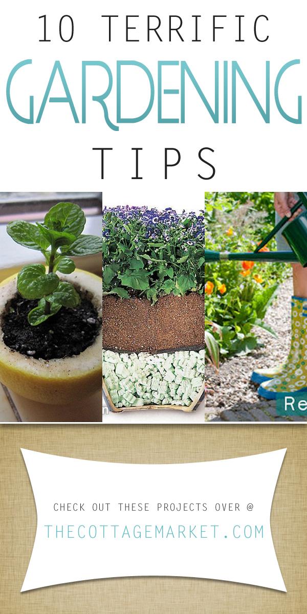 http://thecottagemarket.com/wp-content/uploads/2015/01/gardeningtipTOWER.jpg