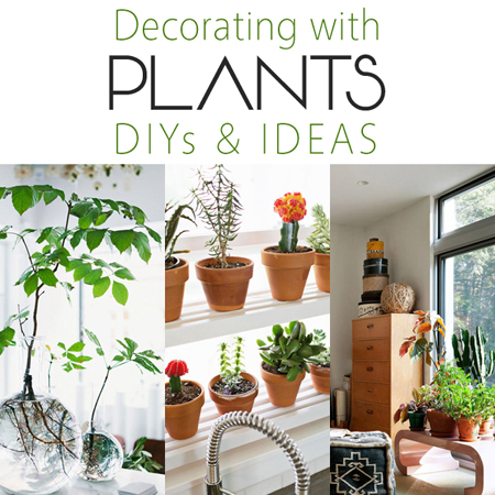 Decorating With Plants Diy S And Ideas The Cottage Market