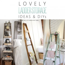 ladderstorage0