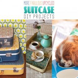 Suitcase-0000