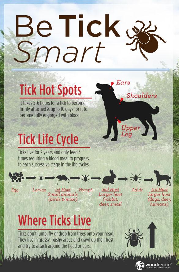 Be-Tick-Smart