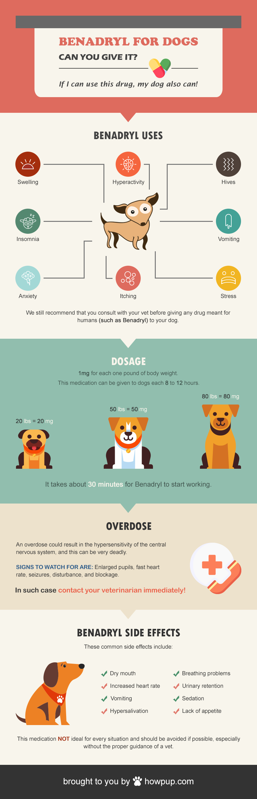 Can You Use Benadryl On Dogs