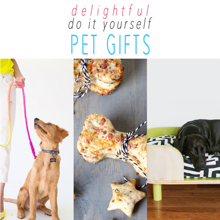 Delightful DIY Pet Gifts
