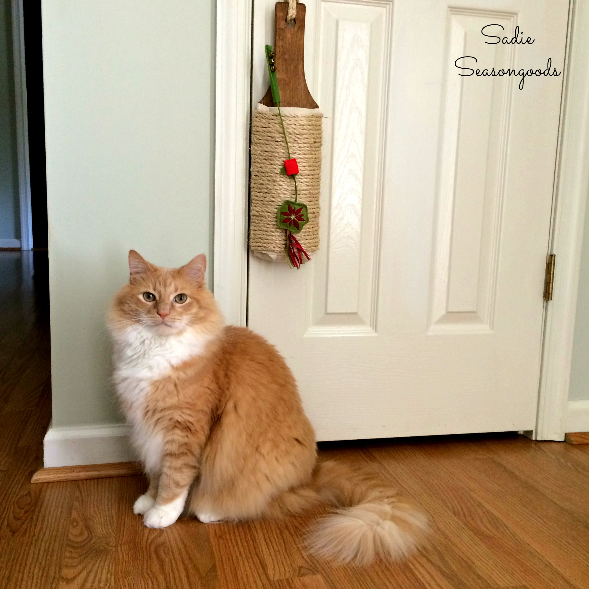 Sadie_Seasongoods_Repurposed_DIY_cat_scratcher_with-Cottonball