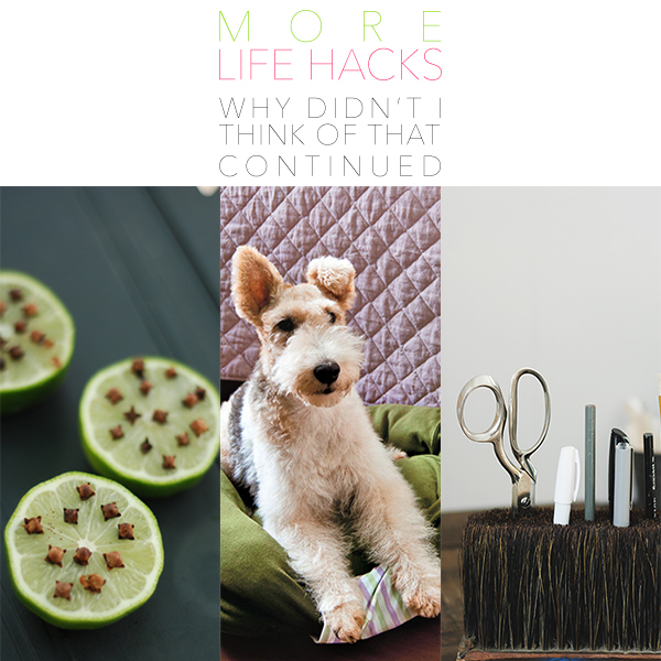 MORE Life Hacks Why DIDN'T I Think Of That Continued