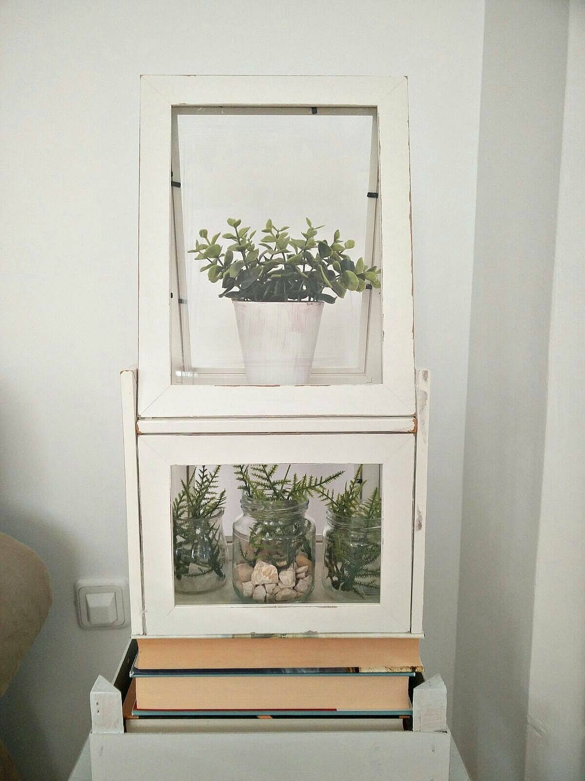 DIY-Terrarium-using-Ikea-frames-kreativk.net-14
