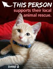 2012_rescue