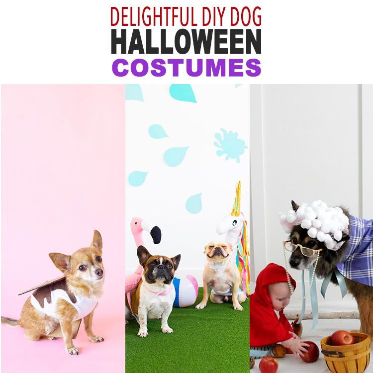 21 Delightful DIY Dog Halloween Costumes
