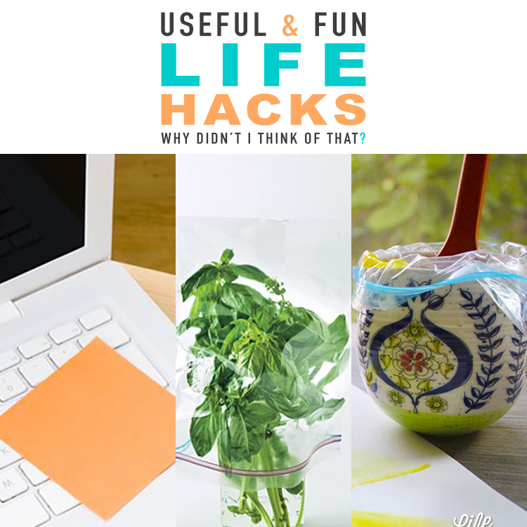 Useful & Fun Life Hacks Why Didn't I Think Of That