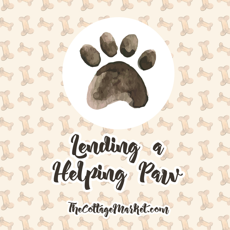 Lending A Helping Paw