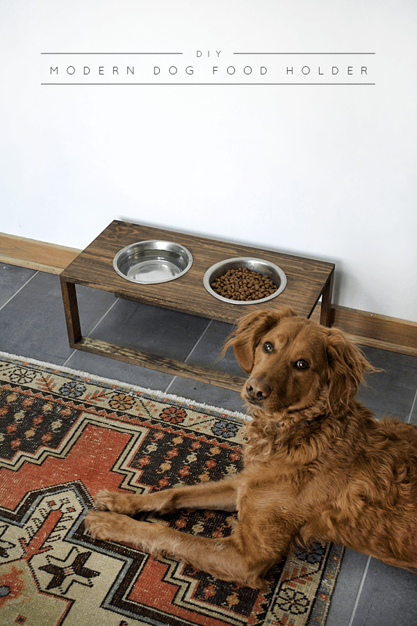 This DIY dog food holder is a super simple DIY that your pup will appreciate