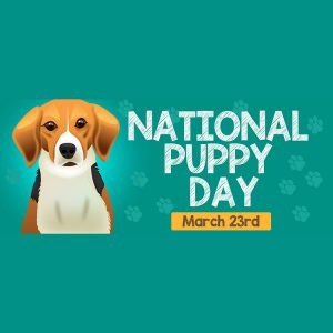 National Puppy Day Is Here, Let's Celebrate!