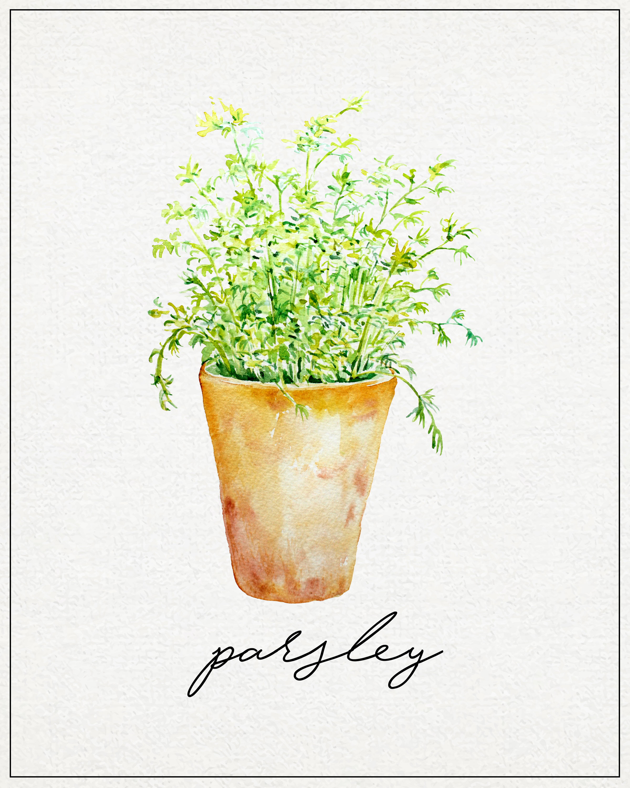 Kitchen Herbs: Free Kitchen Herb Wall Art Printables
