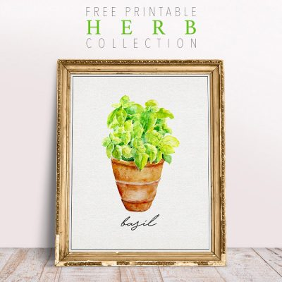 Free Printable Herb Collection