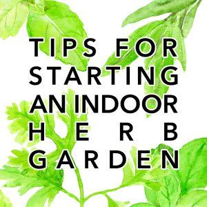 Tips for Starting an Indoor Herb Garden