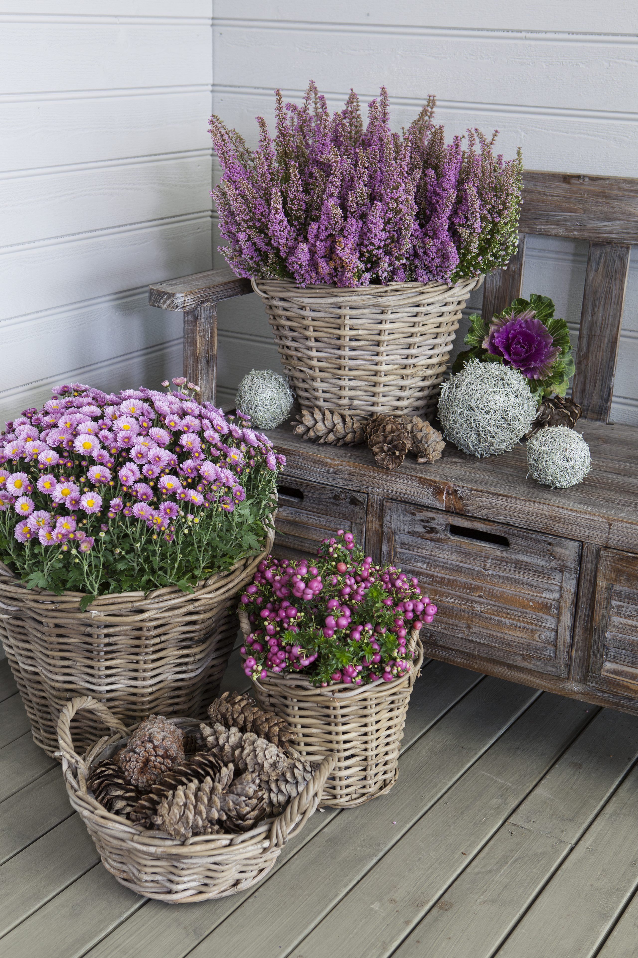 flower pots that will make your porch farmtastic - the cottage market