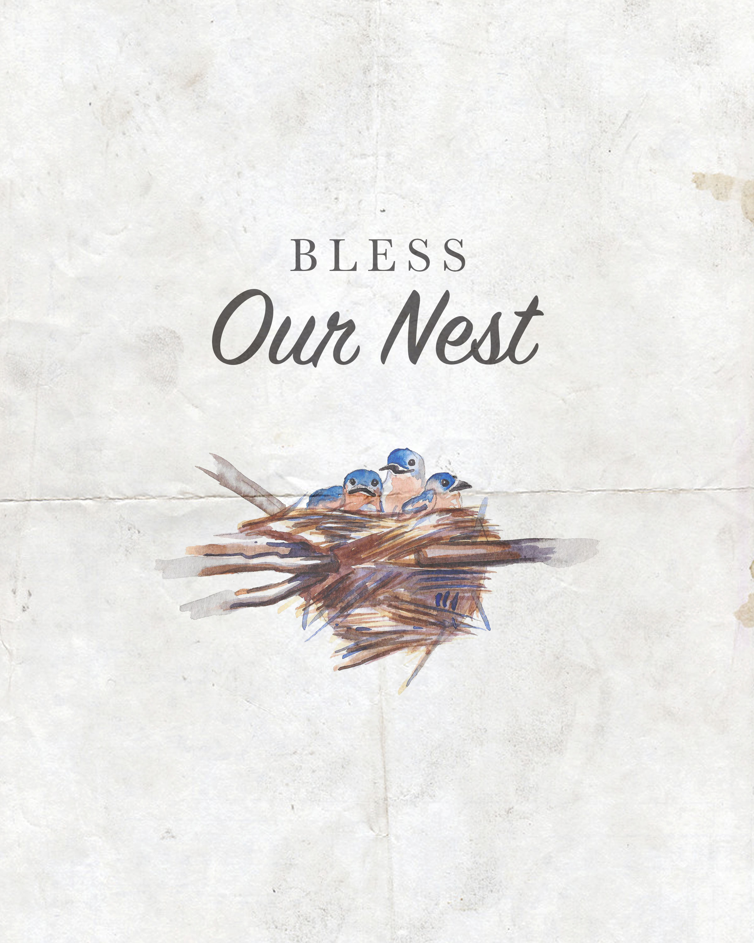 Free Printable Farmhouse Bless This Nest Wall Art Collection