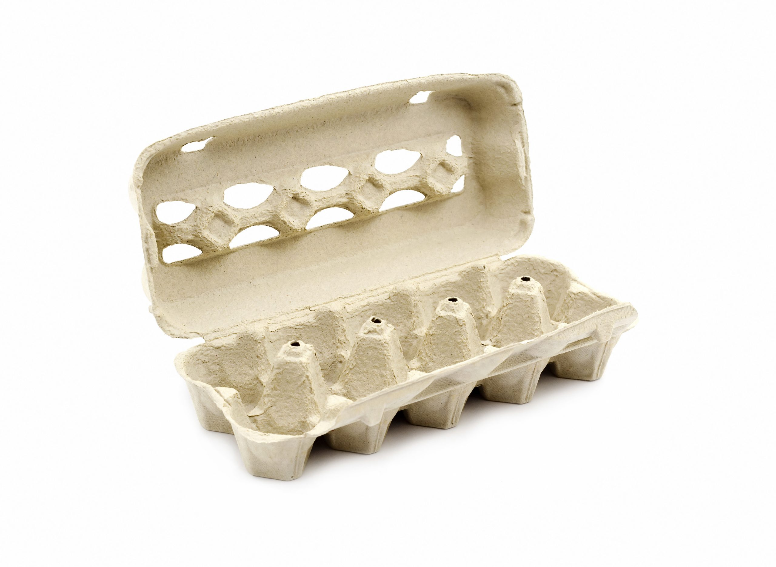 Quick and easy picnic hacks you will use the cottage market for How to recycle egg cartons