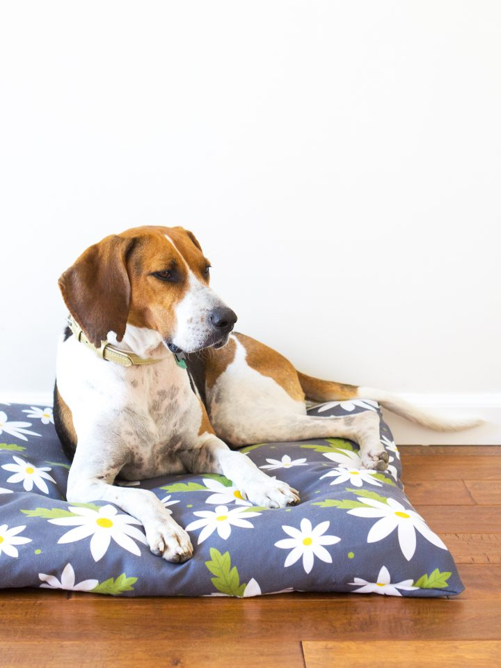 The Ultimate Collection Of Diy Dog Beds 80 The Cottage Market
